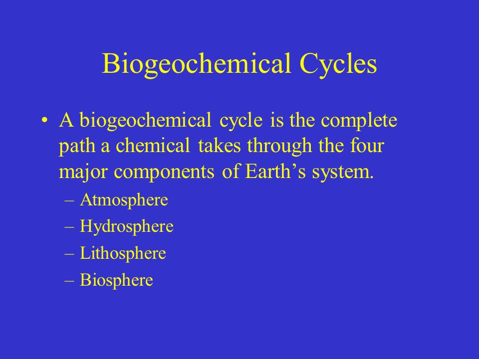 essay on biogeochemical cycles
