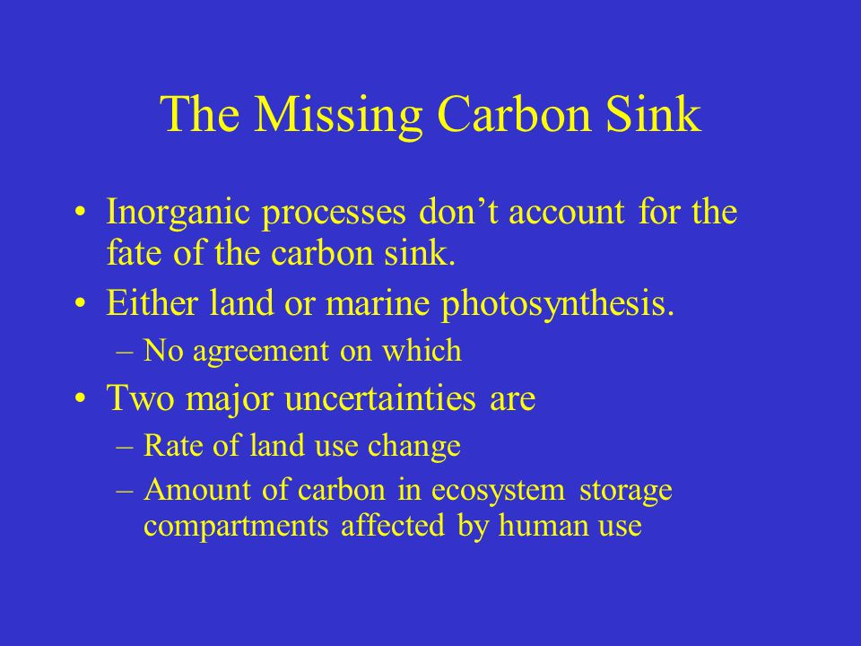The Missing Carbon Sink