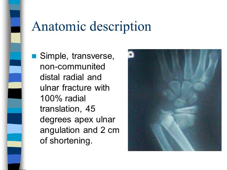Anatomic description