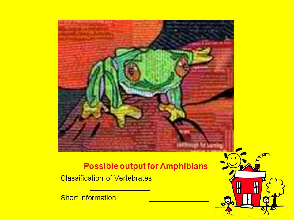 Possible output for Amphibians