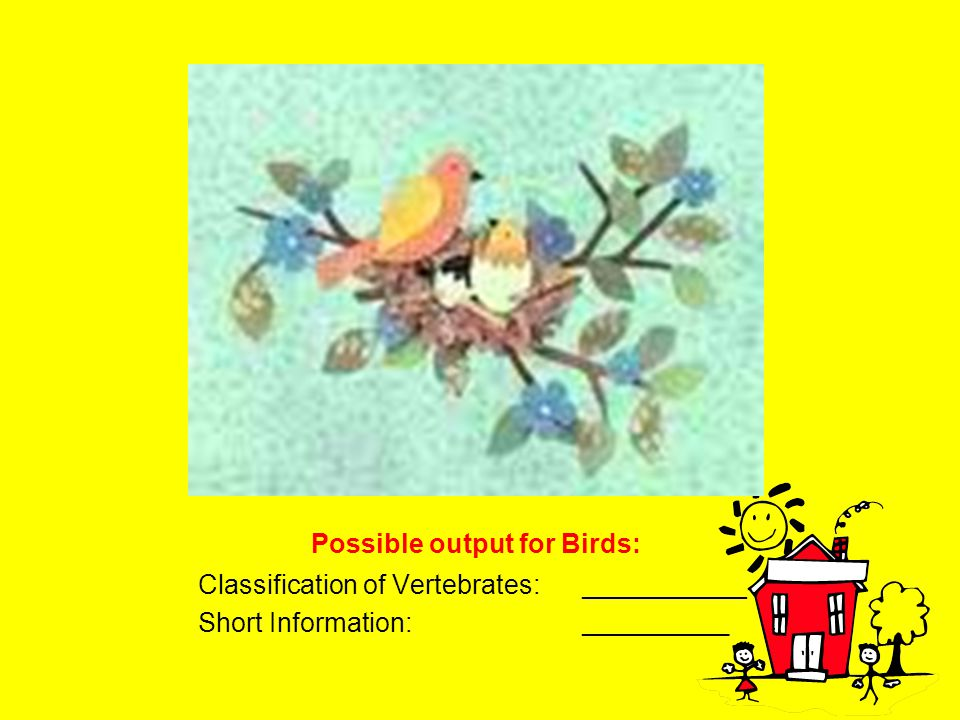 Possible output for Birds: