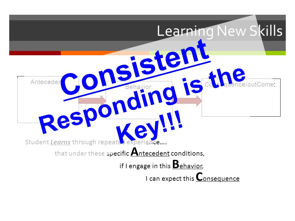 Consistent Responding is the Key!!!