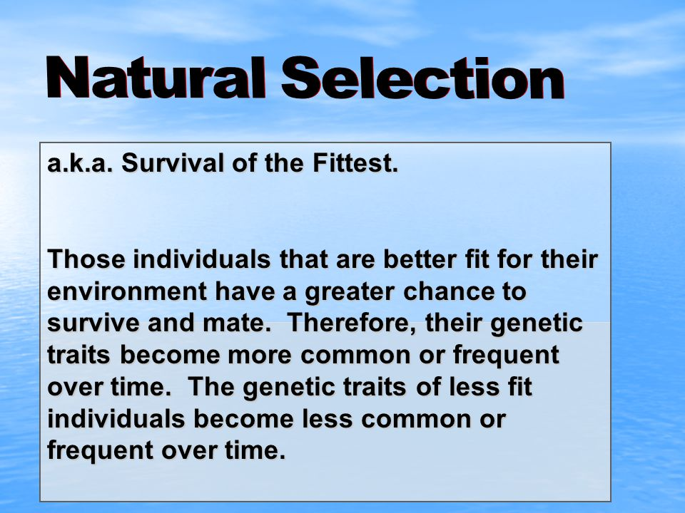Natural Selection a.k.a. Survival of the Fittest.
