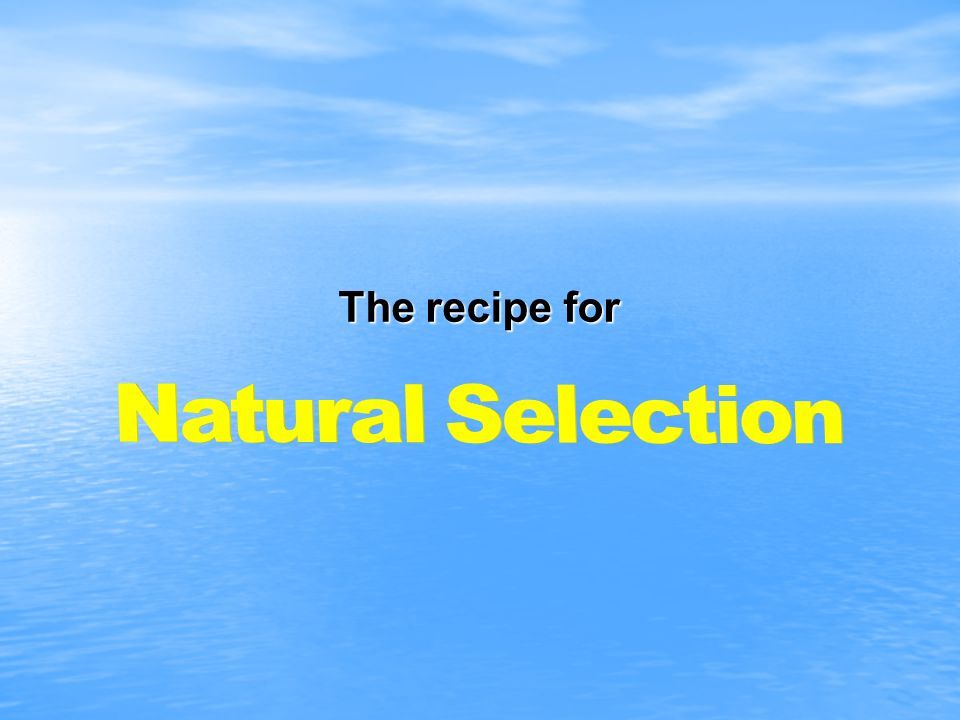 The recipe for Natural Selection