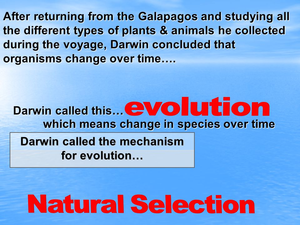 Darwin called the mechanism for evolution…