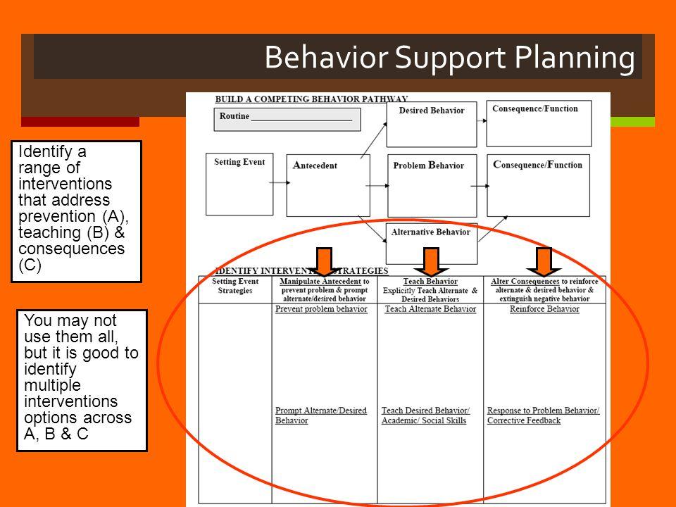 Behavior Support Planning
