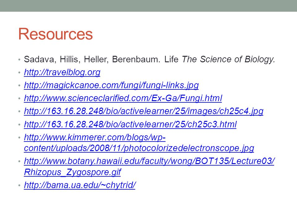 Resources Sadava, Hillis, Heller, Berenbaum. Life The Science of Biology. http://travelblog.org. http://magickcanoe.com/fungi/fungi-links.jpg.