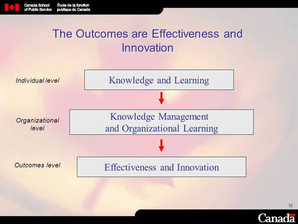 The Outcomes are Effectiveness and Innovation