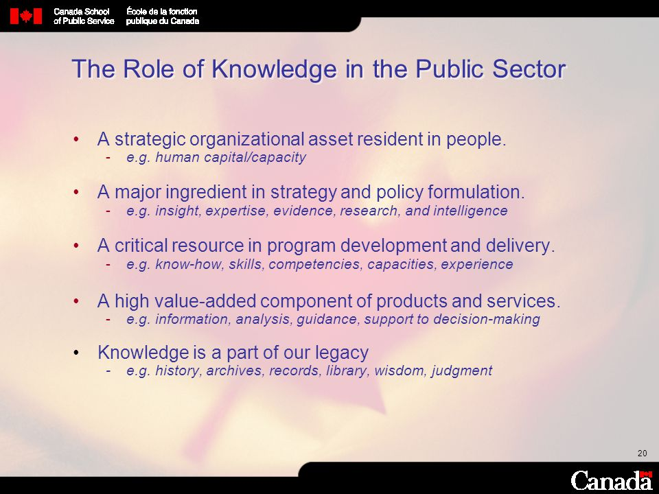 The Role of Knowledge in the Public Sector