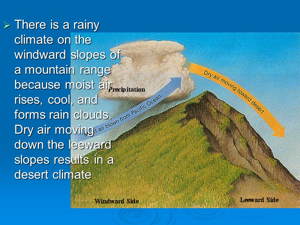 There is a rainy climate on the windward slopes of a mountain range because moist air rises, cool, and forms rain clouds.