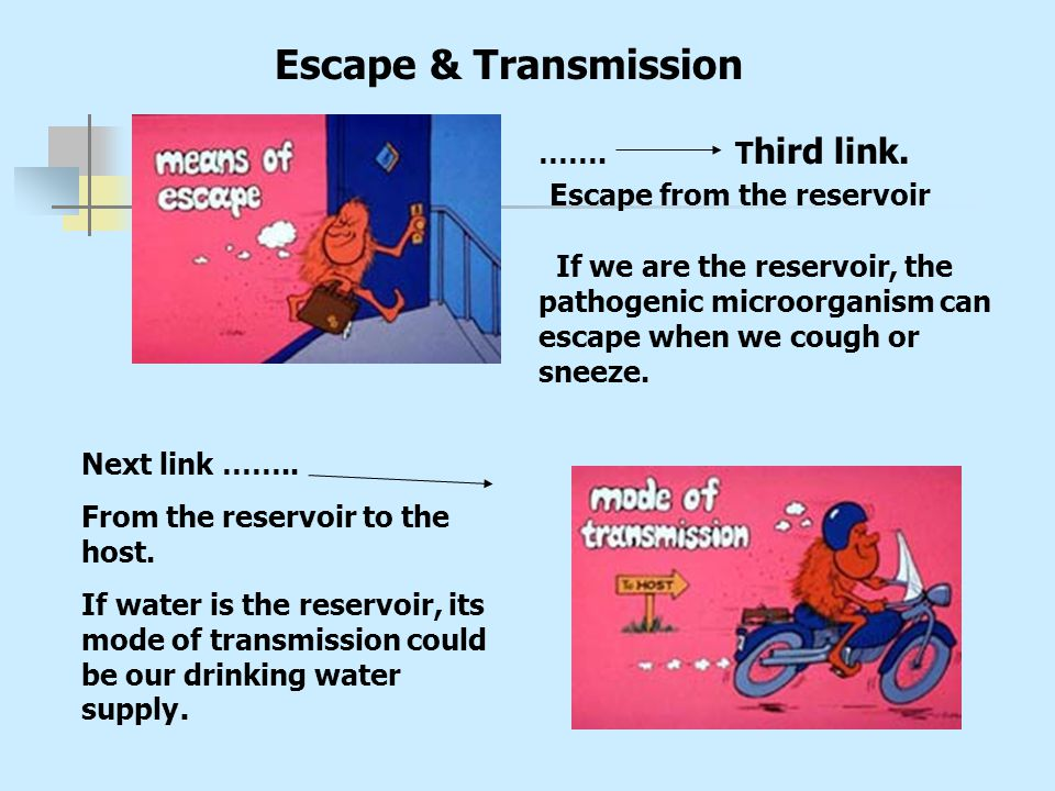 Escape & Transmission Escape from the reservoir ……. Third link.