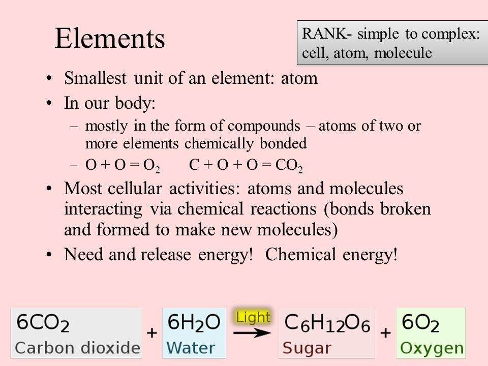 Elements Smallest unit of an element: atom In our body: