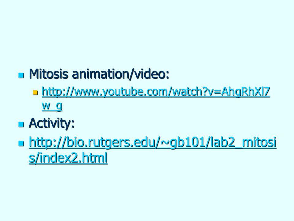 Mitosis animation/video: