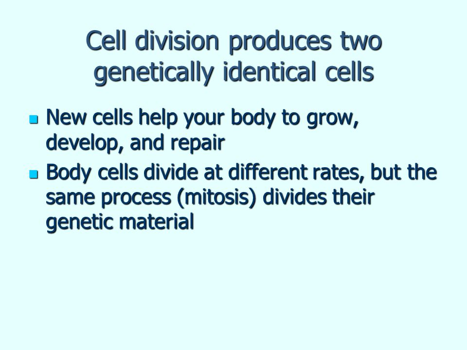 Cell division produces two genetically identical cells