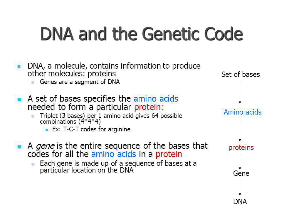 DNA and the Genetic Code