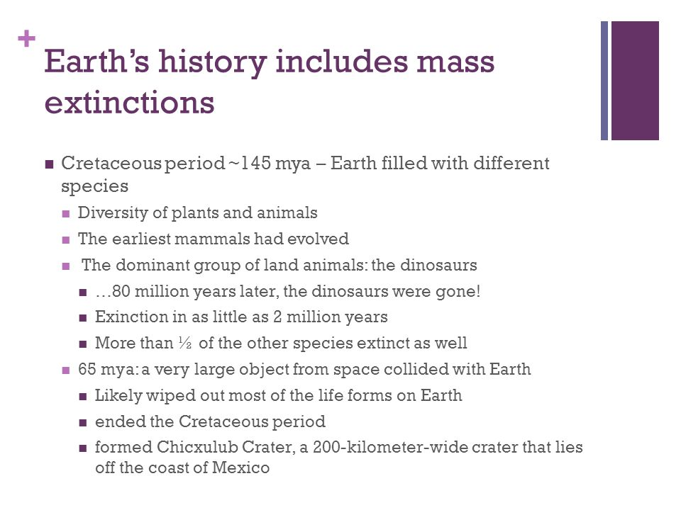 Earth's history includes mass extinctions