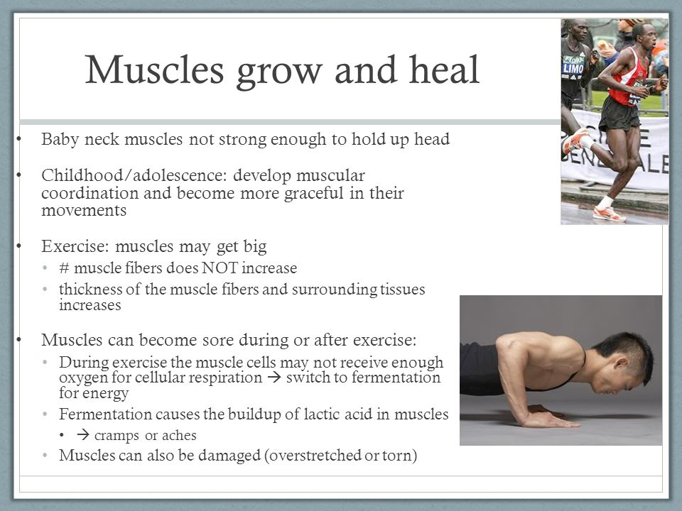 Muscles grow and heal Baby neck muscles not strong enough to hold up head.