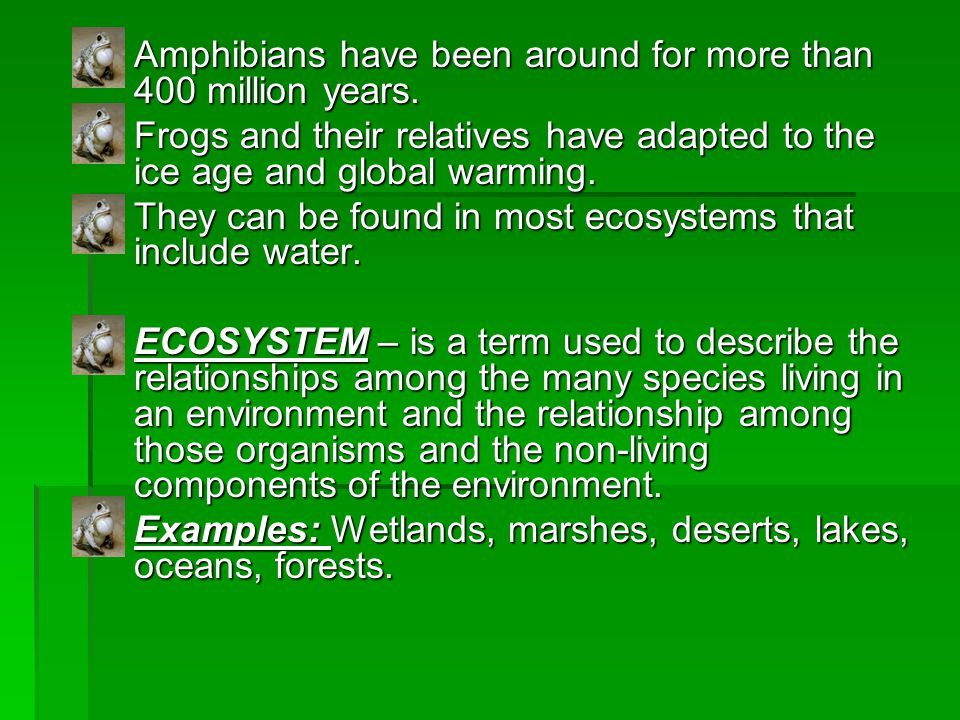 Amphibians have been around for more than 400 million years.