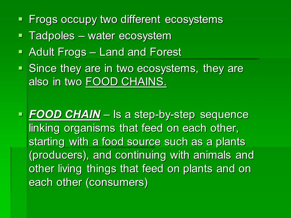 Frogs occupy two different ecosystems