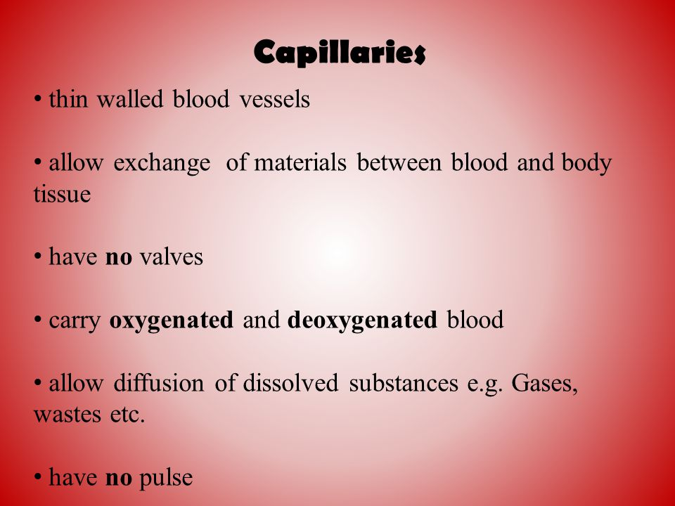 Capillaries thin walled blood vessels