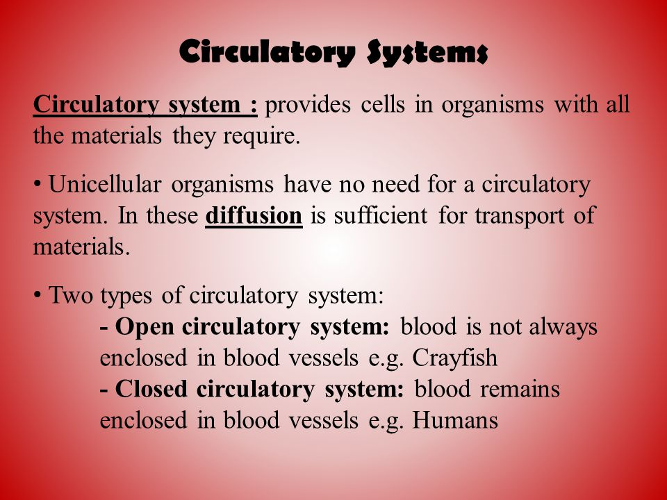 Circulatory Systems Circulatory system : provides cells in organisms with all the materials they require.
