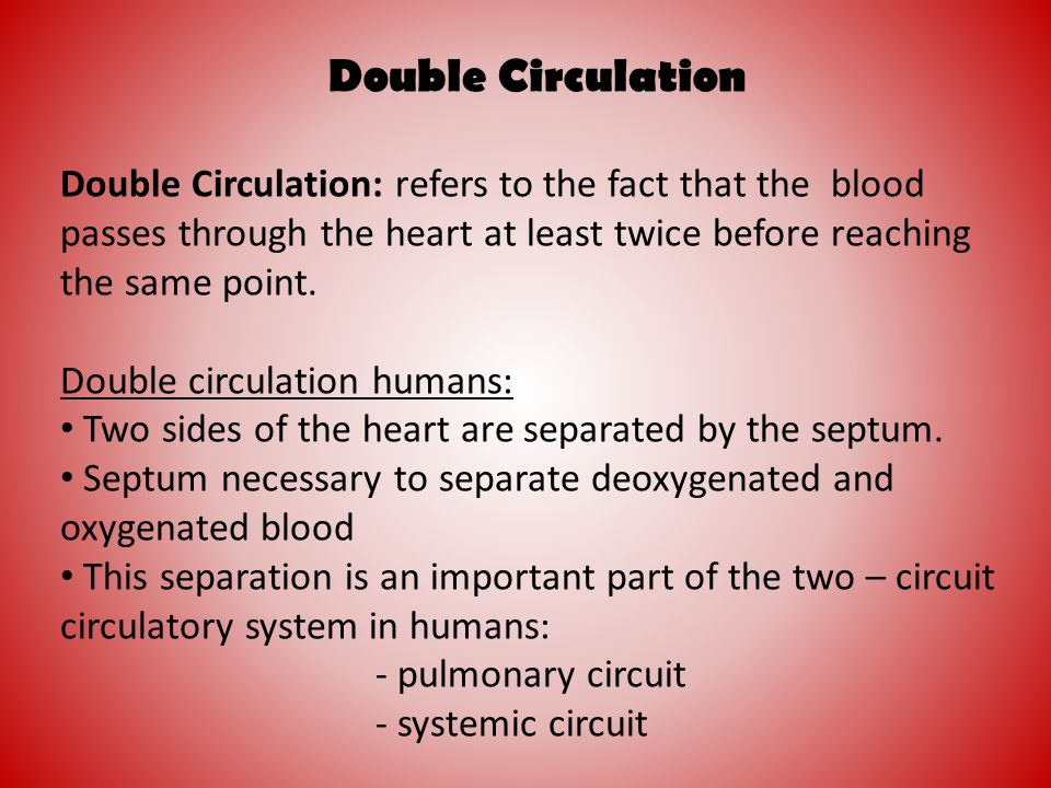 Double Circulation Double Circulation: refers to the fact that the blood passes through the heart at least twice before reaching the same point.