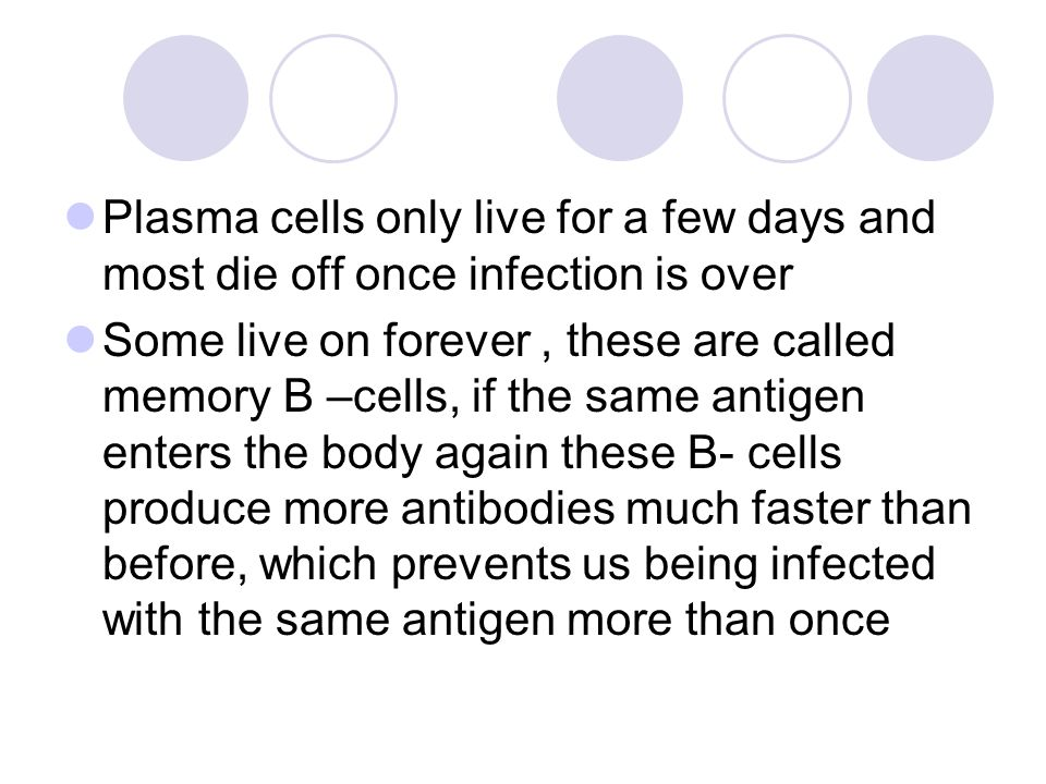 Plasma cells only live for a few days and most die off once infection is over