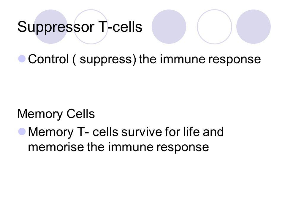 Suppressor T-cells Control ( suppress) the immune response