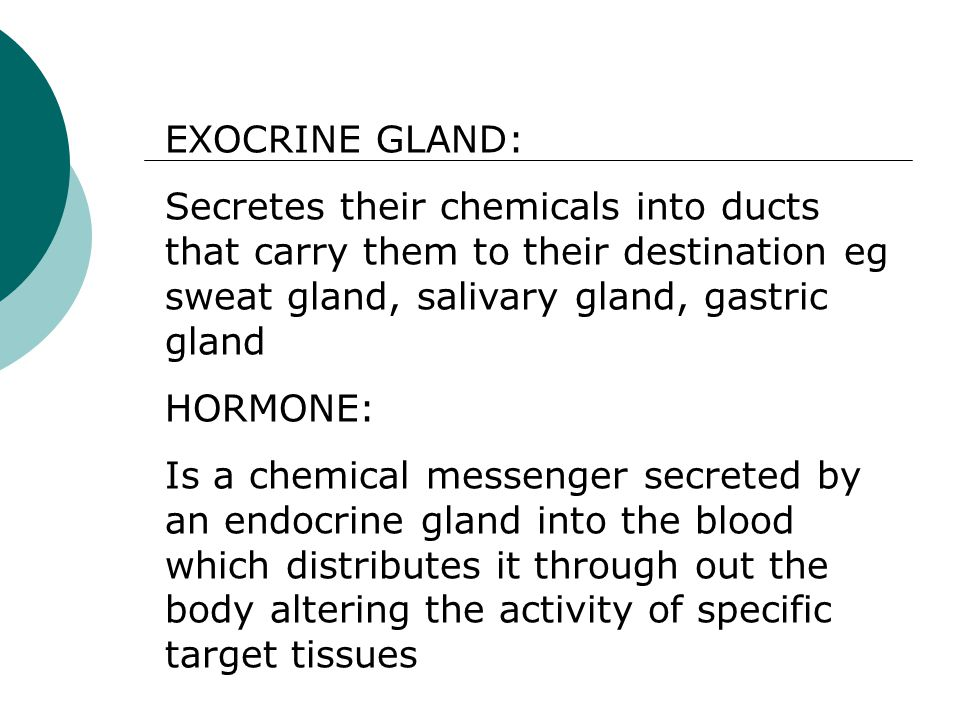 EXOCRINE GLAND: Secretes their chemicals into ducts that carry them to their destination eg sweat gland, salivary gland, gastric gland.