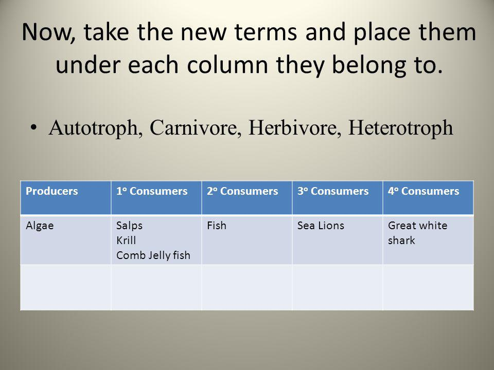 Now, take the new terms and place them under each column they belong to.