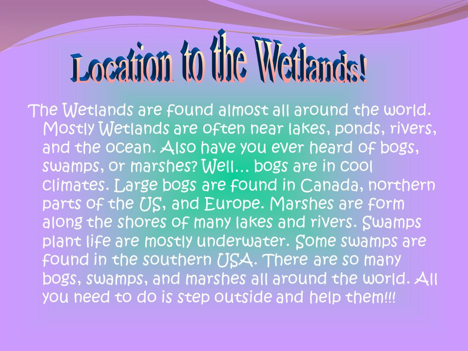Location to the Wetlands!