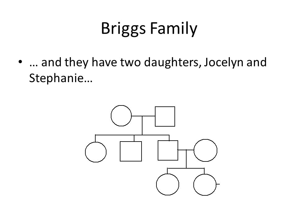 Briggs Family … and they have two daughters, Jocelyn and Stephanie…