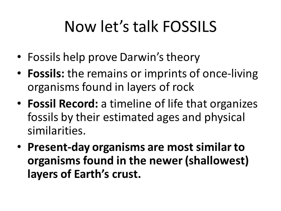 Now let's talk FOSSILS Fossils help prove Darwin's theory