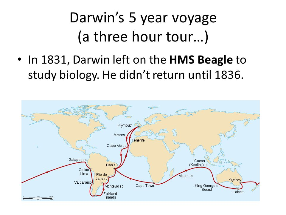 Darwin's 5 year voyage (a three hour tour…)