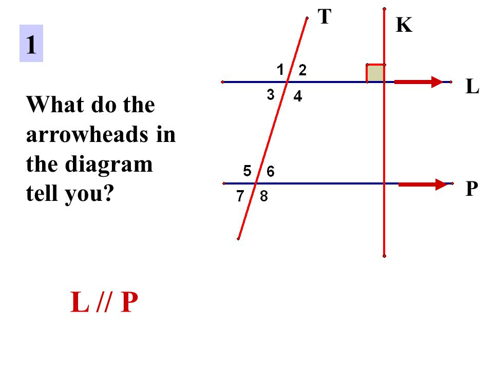 T K 1 L What do the arrowheads in the diagram tell you P L // P