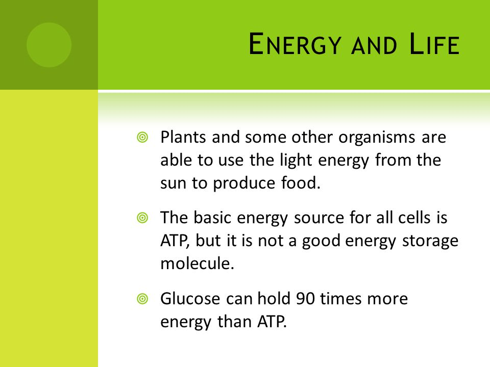 Energy and Life Plants and some other organisms are able to use the light energy from the sun to produce food.