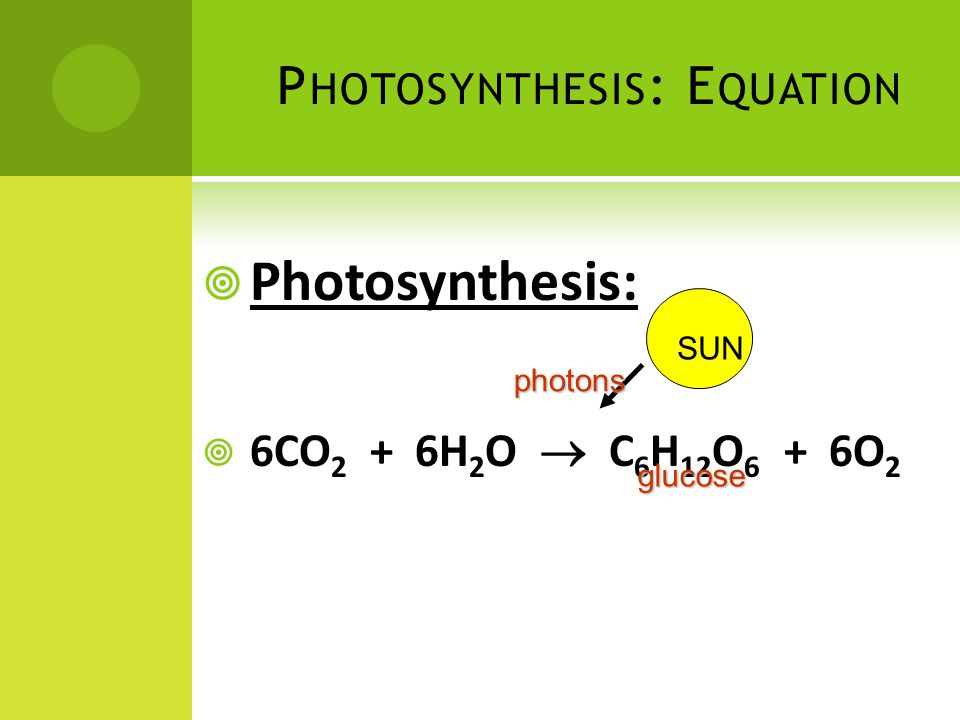 Photosynthesis: Equation