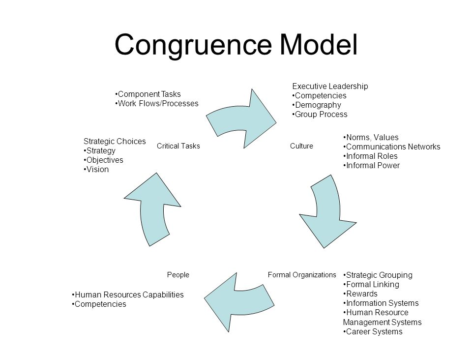 Congruence Model Executive Leadership Competencies Component Tasks