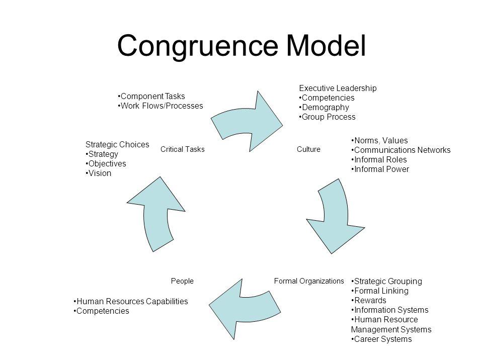 Congruence Model Executive Leadership Competencies Component Tasks