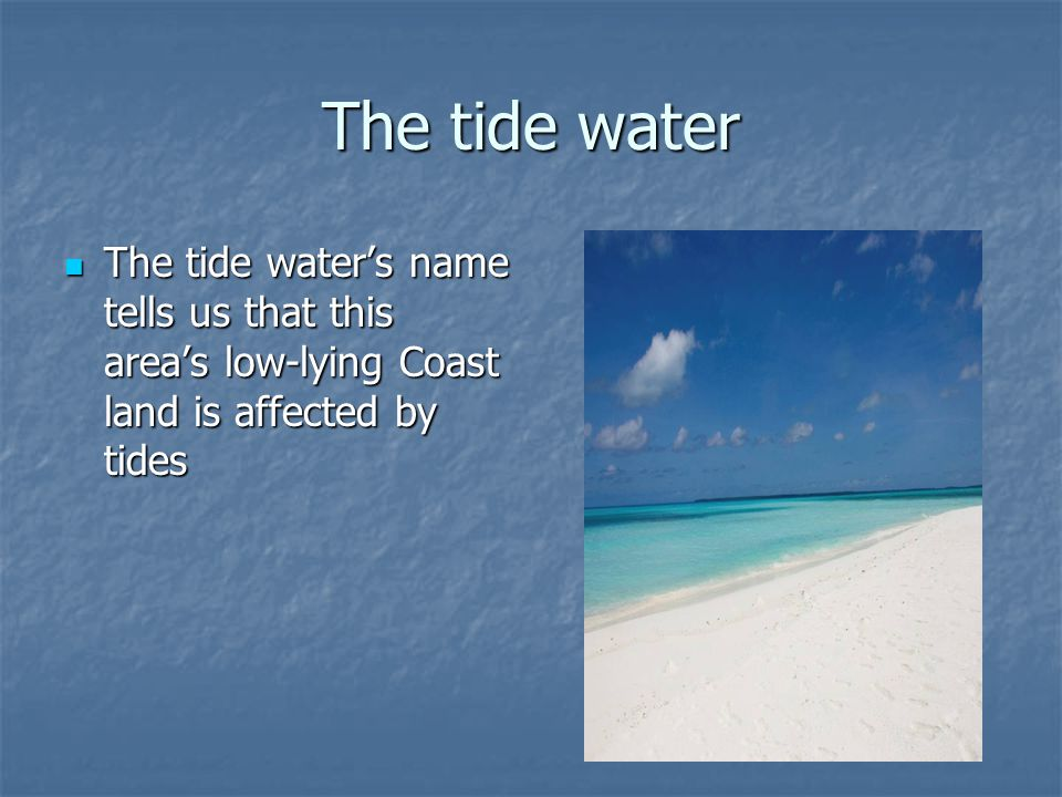 The tide water The tide water's name tells us that this area's low-lying Coast land is affected by tides.