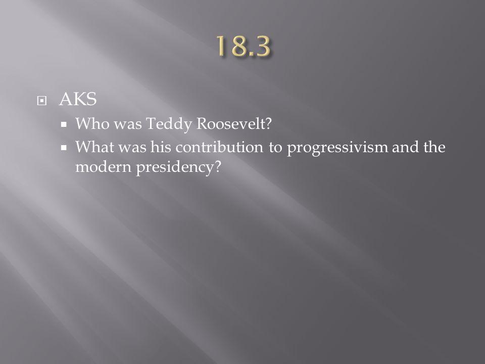 18.3 AKS Who was Teddy Roosevelt