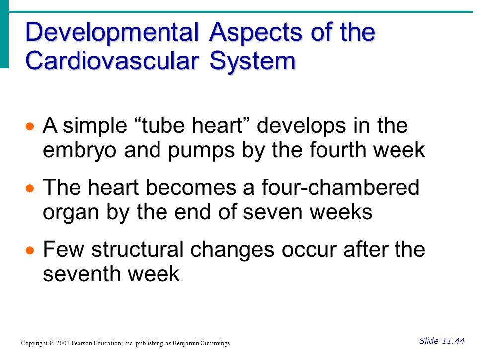 Developmental Aspects of the Cardiovascular System