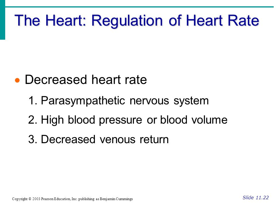 The Heart: Regulation of Heart Rate