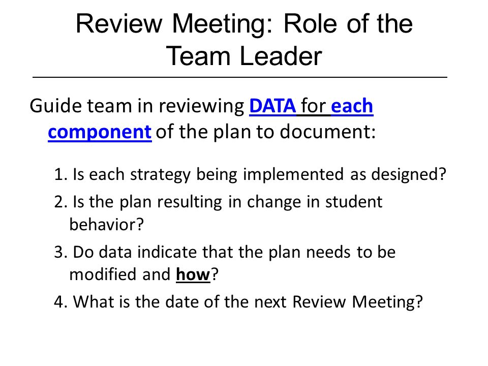 Review Meeting: Role of the Team Leader