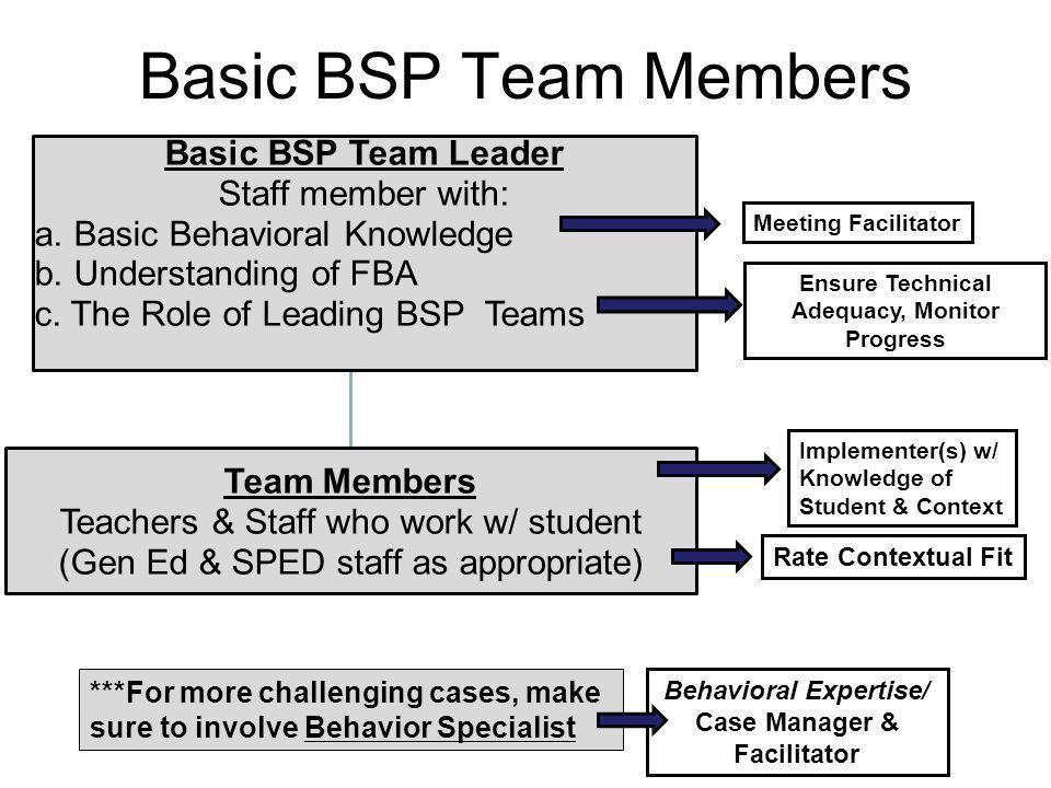 Basic BSP Team Members Basic BSP Team Leader Staff member with: