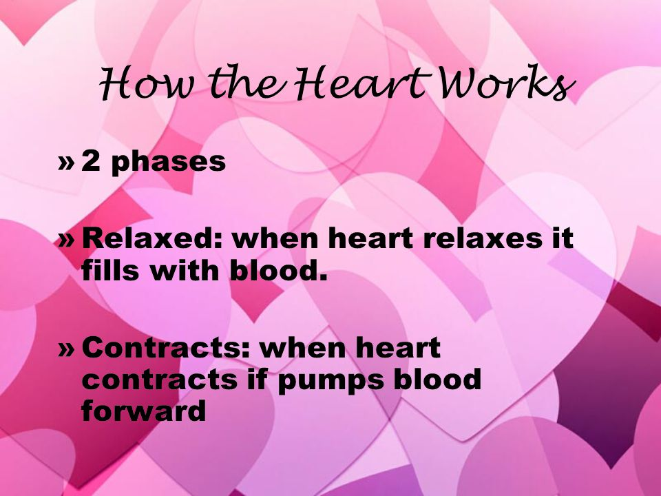 How the Heart Works 2 phases