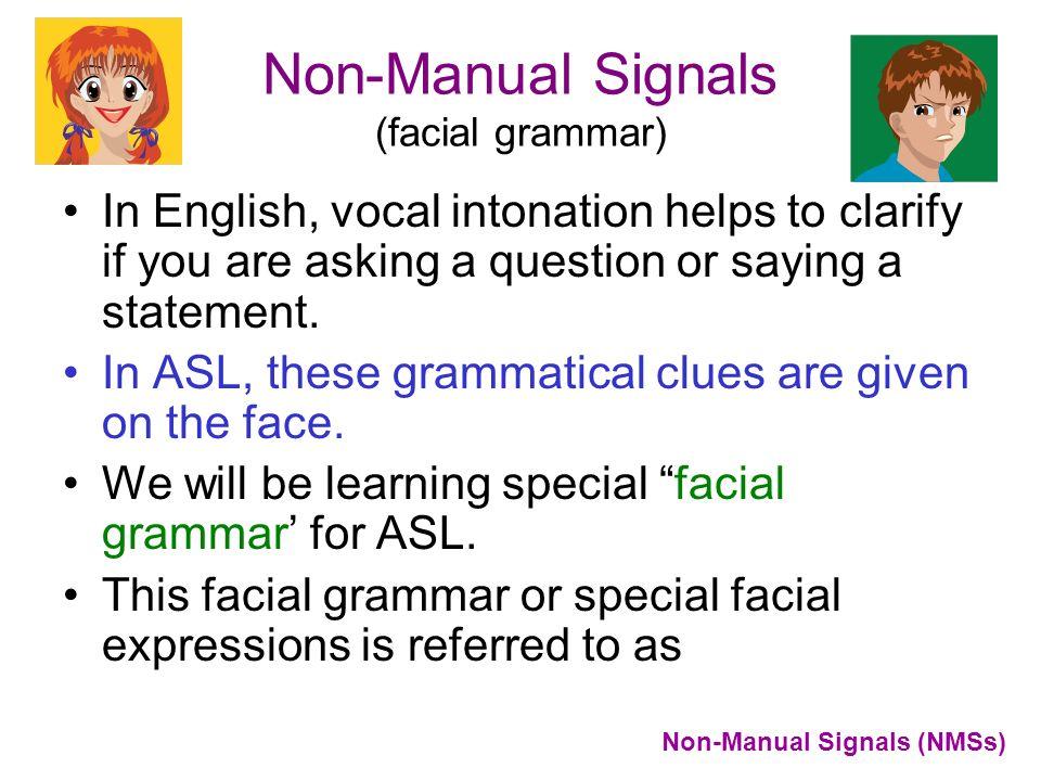 Non-Manual Signals (facial grammar)