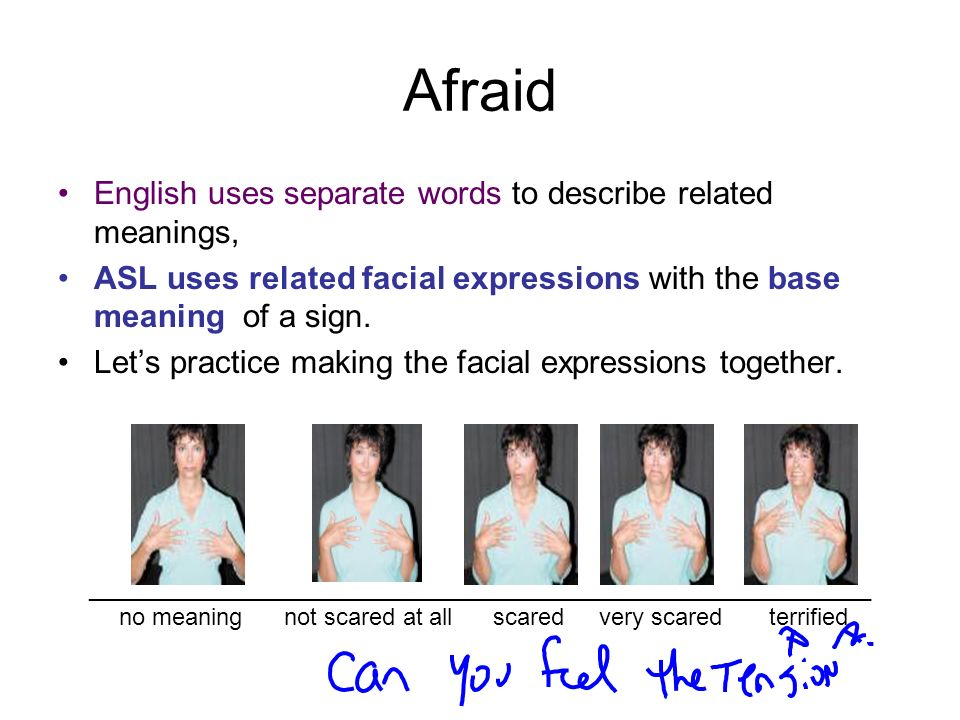 Afraid English uses separate words to describe related meanings,