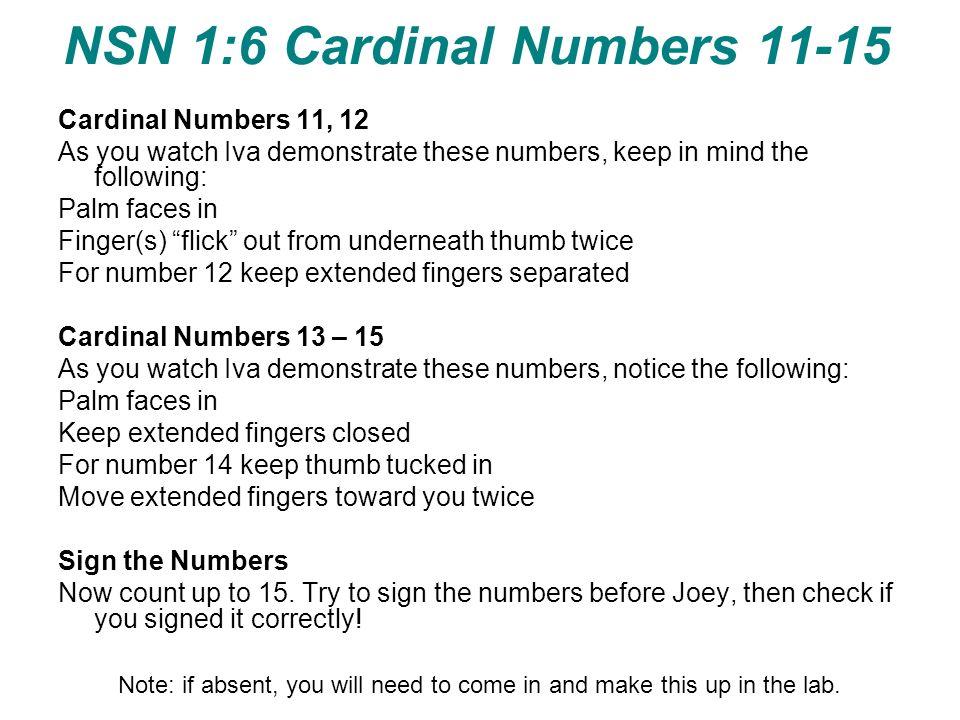 NSN 1:6 Cardinal Numbers 11-15