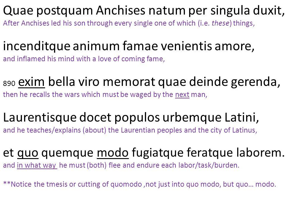 Quae postquam Anchises natum per singula duxit,